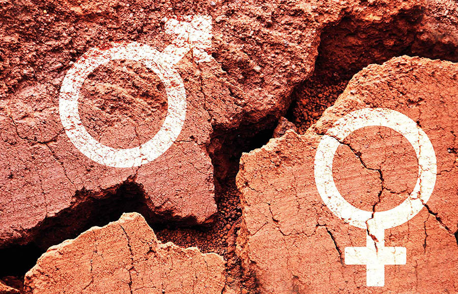 image of male and female symbol on broken red rock background